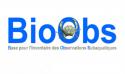 Formation sur l'utilisation de BioObs