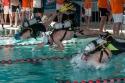 Plongée Sportive en Piscine - Championnat régional Occitanie à Colomiers