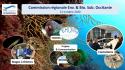 Nouveau bureau CREBS Occitanie PM - Missions & projets 2020-2021