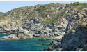 Apnée : sortie à Port-Vendres en mai