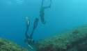 Pêche sous-marine - Journée de Formation et rencontre