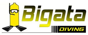 Bigata